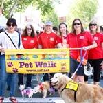 Animals on Broadway Pet Walk