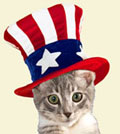 Cat Independence Days