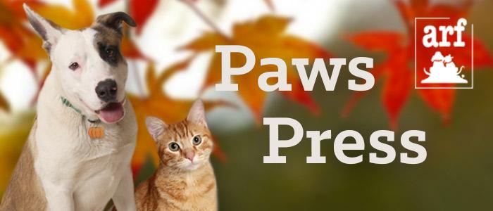 2016 november paws